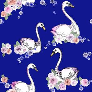 Swan Blues