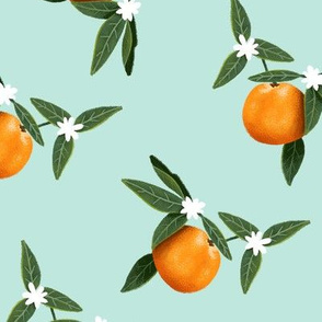 Ooooh Oranges