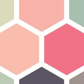 20-05p Jumbo Hexagon Peach Coral Gray Mint