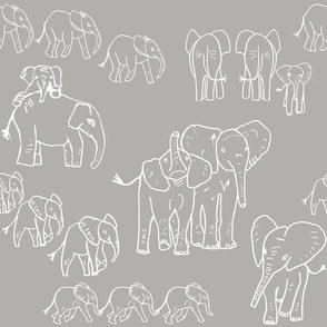 Baby Elephants on Safari!