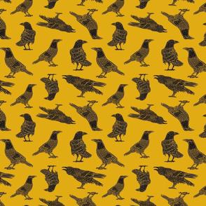 Crows on Saffron