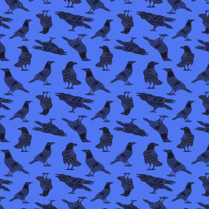 Crows on Blue