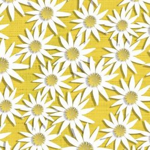 Papercut Bee Daisy Chain Coordinate