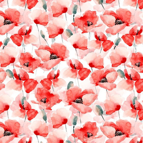 """14"""" Poppy - Hand drawn watercolor poppies on white"""