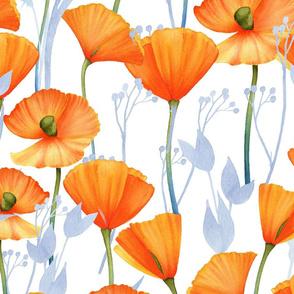 "24"" Orange Hand drawn watercolor  Poppy Meadow"