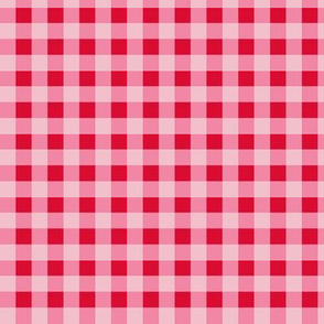 GINGHAM (pink) LARGESCALE