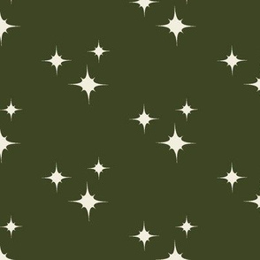Muslin Stars on Winter Green