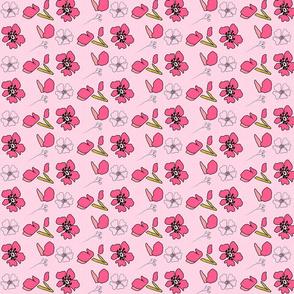 Sakura Coordinate 1