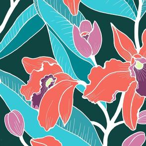 Jumbo Wild Orchid-orange