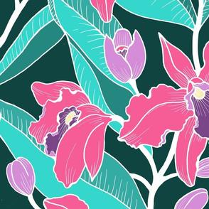 Jumbo Wild Orchid-Fuschia aqua
