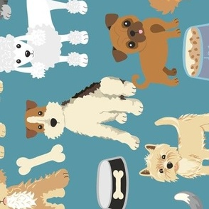 Adorable Puppy Cute Pet Dogs Rotated