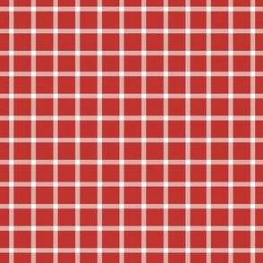 Liberty Red Gingham-6