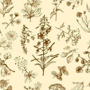 Siberian summer herbs (ivory)