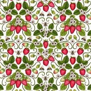 Strawberries & Honey Bees - Spring/Summer Pattern