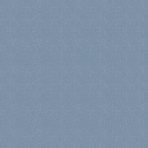 2020 Pantone 17-4021 Faded Denim thatched