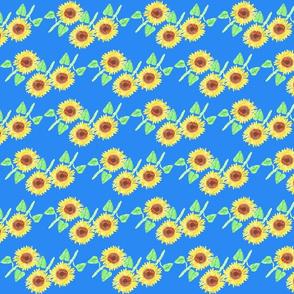 sunflower 7