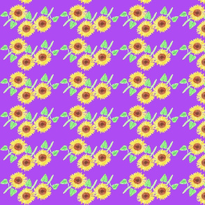 sunflower  with orchid background