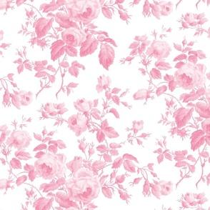 Dolly Rose ~  Rose de Pompadour and White