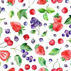 Watercolor berries mix