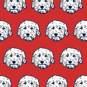Dooodle dog faces with red background