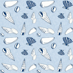 sea shell light blue