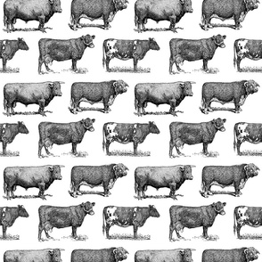 Classic Cow Illustrations Black & White Pattern