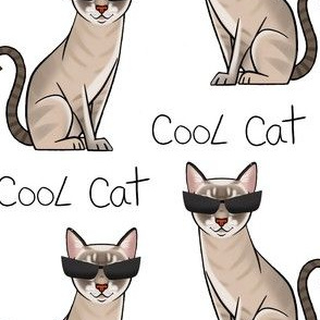 Cool cat -nalacat collection