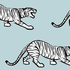 Stalking Tiger on Ice Blue