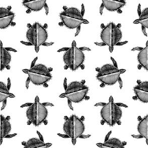 Classic Sea Turtle Print (Large Scale)