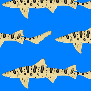 Leopard Shark lg on Sea blue
