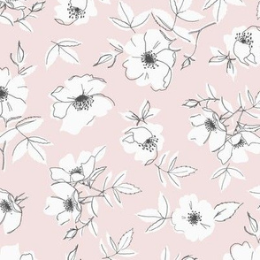 Pink and White Wild Roses