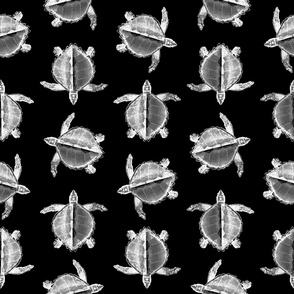 Sea Turtle Print with Black Background (Large Scale)