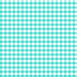 Country turquoise 1x1 plaid