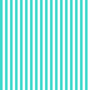 Country turquoise 1x1 stripe