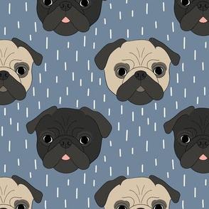 Pugs on blue