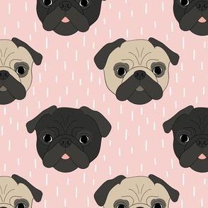 Pugs on pink