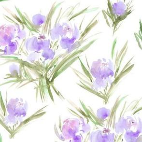 peonies for princess - pastel watercolor bouquets p271