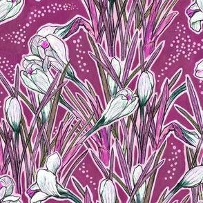 White Crocuses, Spring Flowers, Botanical Floral Pattern, Fuchsia Magenta
