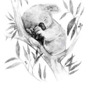 Sleepy Koala, black white // centered