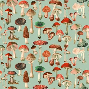 Mushies, Red and Green // small