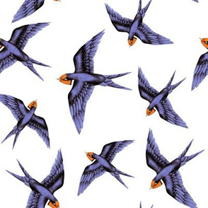 Swooping Swallows Flock on White