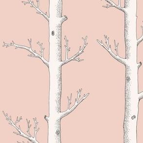 Found Objects from Australian Bush Nature Walk