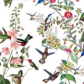 HUMMINGBIRDS (WHITE)