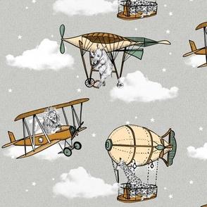 Safari Nostalgic Airplanes