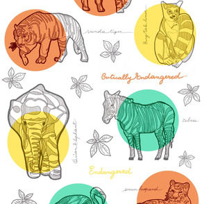 Safari LOVE & LIVE_ Leaves Stronger colours