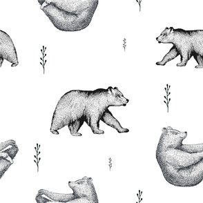 Hand drawn black and white illustration of bear