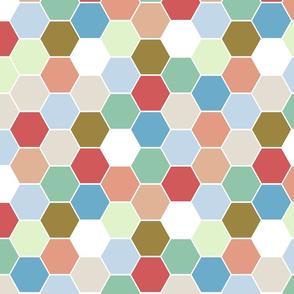 Bloom_hexagon
