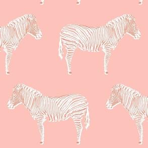Zebra Chic | pink + orange