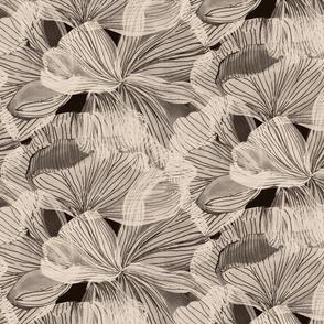 Petal Lines  Brown