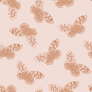 Butterfly | blush + terracotta
